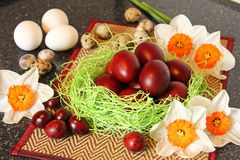 Uova di Pasqua rosse con i fiori Immagini Stock Libere da Diritti
