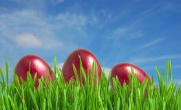 Uova di Pasqua rosse in erba verde sotto cielo blu Fotografie Stock Libere da Diritti