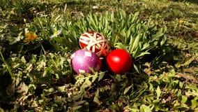 Uova di Pasqua Su erba Immagini Stock Libere da Diritti