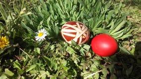 Uova di Pasqua Su erba verde Fotografia Stock Libera da Diritti