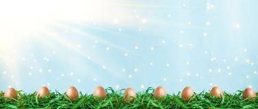 Uova di Pasqua su erba verde con bokeh e luce solare su un concetto blu di Pasqua del fondo illustrazione di stock