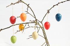 Uova di Pasqua su gattino Immagini Stock Libere da Diritti
