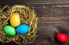 Uova di Pasqua Su un fondo di legno Uova di Pasqua del co differente Fotografie Stock Libere da Diritti