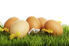 Uova di Pasqua Su un prato Fotografia Stock Libera da Diritti
