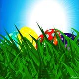 Uova di Pasqua sul fondo del cielo blu e dell'erba Fotografia Stock