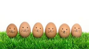 Uova di Pasqua sveglie dei coniglietti in erba verde Decorazione divertente Fotografia Stock Libera da Diritti