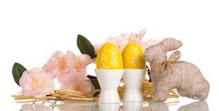 Uova di Pasqua in tazze, coniglietto, ramo con i fiori, isolati Fotografia Stock