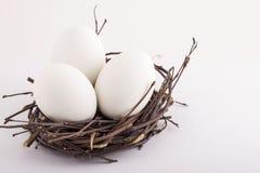 Uova di Pasqua. Immagini Stock
