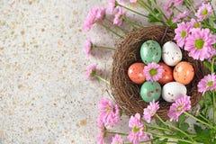 Uova di Pasqua In un nido Fotografia Stock Libera da Diritti