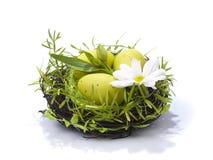 Uova di Pasqua In un nido Fotografie Stock Libere da Diritti