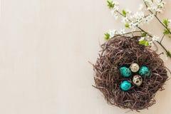 Uova di Pasqua in un nido del ramo Fotografie Stock Libere da Diritti