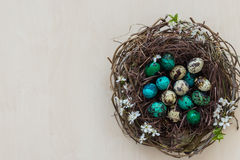 Uova di Pasqua in un nido del ramo Fotografia Stock