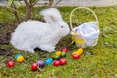 Uova di Pasqua variopinte dentro il vimine della paglia, su paglia Fotografia Stock