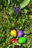 Uova di Pasqua variopinte in erba verde Fotografia Stock Libera da Diritti
