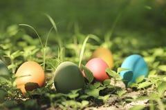 Uova di Pasqua variopinte in natura Immagine Stock