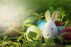 Uova di Pasqua variopinte in natura Fotografia Stock