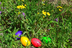 Uova di Pasqua variopinte nel giardino di primavera Immagine Stock Libera da Diritti