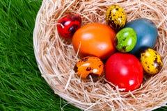 Uova di Pasqua Variopinte in nido sopra l'erba Immagini Stock