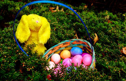 Uova di Pasqua variopinte in nido sul prato Immagine Stock