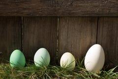 Uova di Pasqua verdi in una fila Fotografie Stock Libere da Diritti