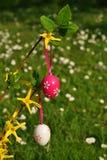 Uova di Pasqua verticali sul branchlet Immagine Stock