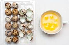 Uova di quaglia Fotografie Stock