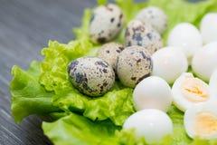 Uova di quaglia con i verdi Fotografia Stock Libera da Diritti