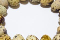 Uova di quaglia dall'azienda agricola domestica Prodotto ecologico Immagini Stock