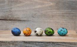 Uova di quaglia dipinte per Pasqua Immagine Stock