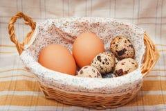 Uova di quaglia e del pollo in un canestro Immagine Stock Libera da Diritti