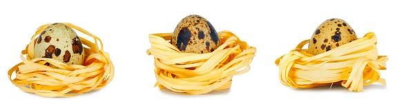 Uova di quaglia fresche su fondo isolato bianco fotografia stock