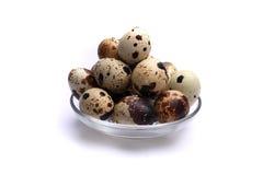 Uova di quaglia, isolate su fondo bianco Fotografia Stock Libera da Diritti