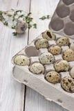 Uova di quaglia nel cartone che ingrassa la tavola bianca Fotografia Stock
