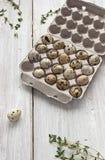 Uova di quaglia nel cartone che ingrassa la tavola bianca Fotografie Stock