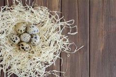 Uova di quaglia nel nido della paglia Fotografia Stock Libera da Diritti