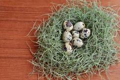 Uova di quaglia nel nido verde su struttura di legno Fotografie Stock