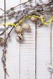 Uova di quaglia, rami del salice e nastro giallo sul backgro di legno Fotografia Stock