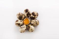 Uova di quaglia sane Immagini Stock