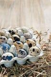 Uova di quaglia su un fondo della paglia Fotografie Stock