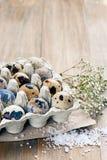 Uova di quaglia su un fondo di legno Fotografie Stock Libere da Diritti
