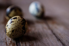Uova di quaglia sui cucchiai di legno Fotografia Stock