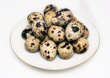 Uova di quaglia sul piattino bianco Fotografie Stock
