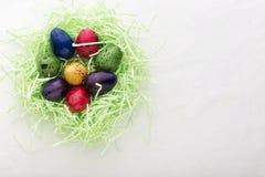 Uova di quaglia tinte in un nido Immagine Stock