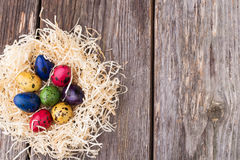 Uova di quaglia tinte in un nido su fondo di legno Immagini Stock Libere da Diritti