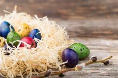 Uova di quaglia tinte in un nido su fondo di legno Fotografia Stock Libera da Diritti