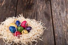 Uova di quaglia tinte in un nido su fondo di legno Fotografia Stock
