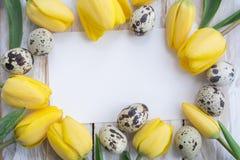 Uova di quaglia, tulipani gialli e carta bianca su fondo di legno Fotografia Stock Libera da Diritti