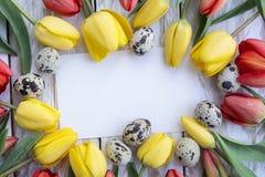 Uova di quaglia, tulipani gialli e carta bianca su fondo di legno Immagine Stock