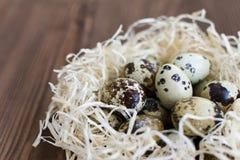 Uova di quaglia in un nido su un fondo di legno Fotografia Stock