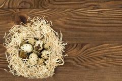 Uova di quaglia in un nido su un fondo di legno Fotografia Stock Libera da Diritti